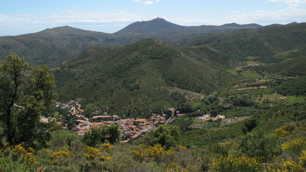 view over La Selva de Mar